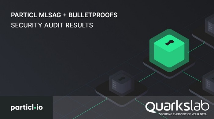 Particl MLSAG + Bulletproofs Security Audit Results